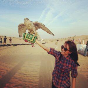 desert-safari-dubai-falcon