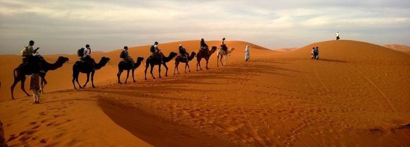 Private Luxury Safari tour in Dubai