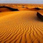 Top 10 Things to do in Dubai Desert