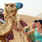 Camel Desert Safari in Dubai