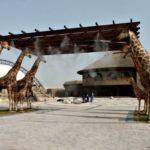 Dubai Safari Park Al-Warqa – Dubai, Entry Ticket Fees, Timings
