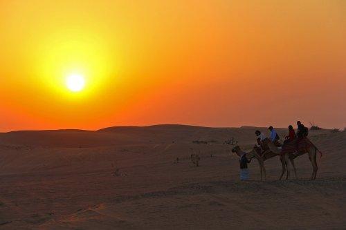 Sunset Safari Dubai